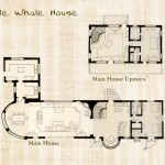 whale_plans